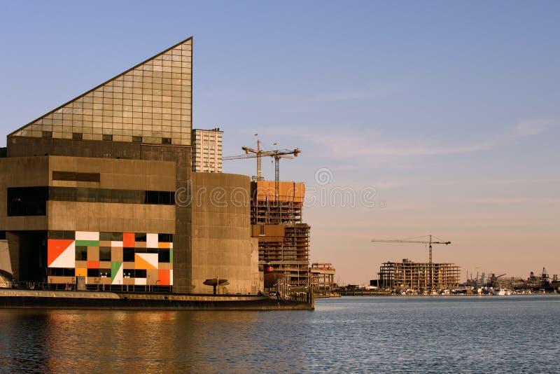 Aquário de Baltimore fotografia de stock