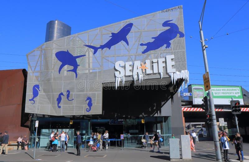 Aquário de Melbourne da VIDA MARINHA foto de stock