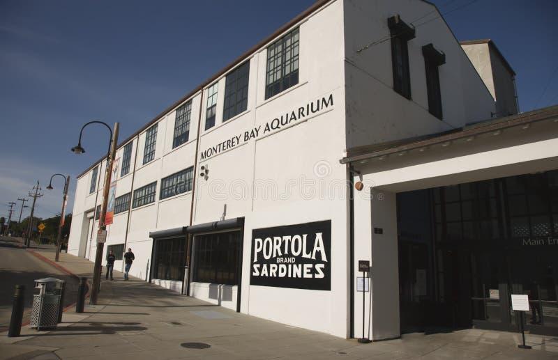 Aquário do louro de Monterey imagem de stock