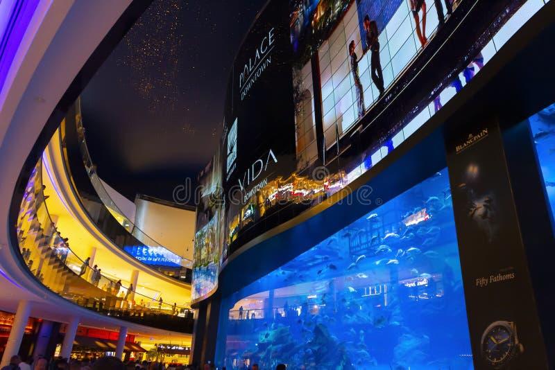 Aqu?rio na alameda de Dubai imagem de stock