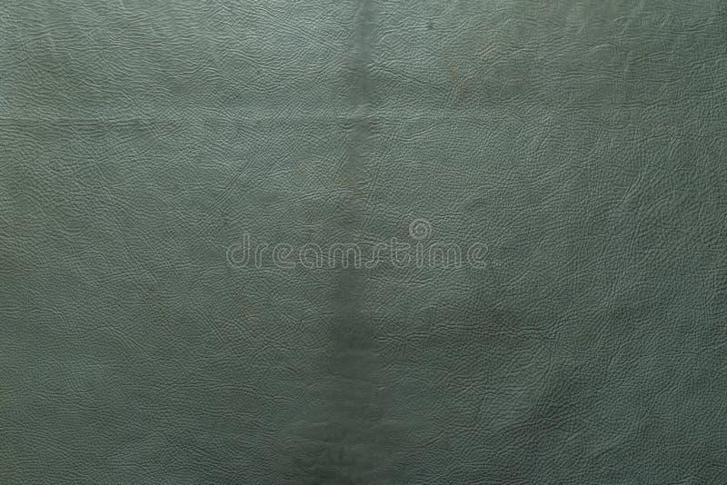Aqua, зеленый цвет, текстура голубого цвета зернистые, тяжелые предпосылка кожи коровы икры зерна и стоковые изображения rf