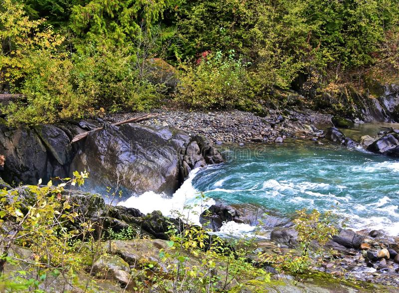 River Whistler. Aqua colored glacier fed river in Whistler Canada with logs and green royalty free stock image