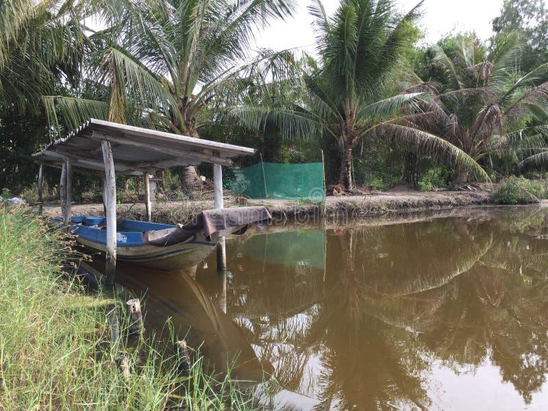 Aquaculture systemy, rozległy tygrysi krewetkowy kultury gospodarstwo rolne obraz stock