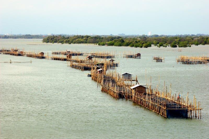 Aquakulturfischereiteich im Eingangsfluß. lizenzfreie stockbilder