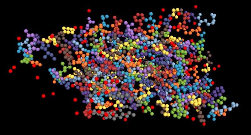 Aquaporin, integrale membraan eiwitmolecule Ook geroepen waterkanalen De atomen van verschillende aminozuren worden vertegenwoord royalty-vrije illustratie