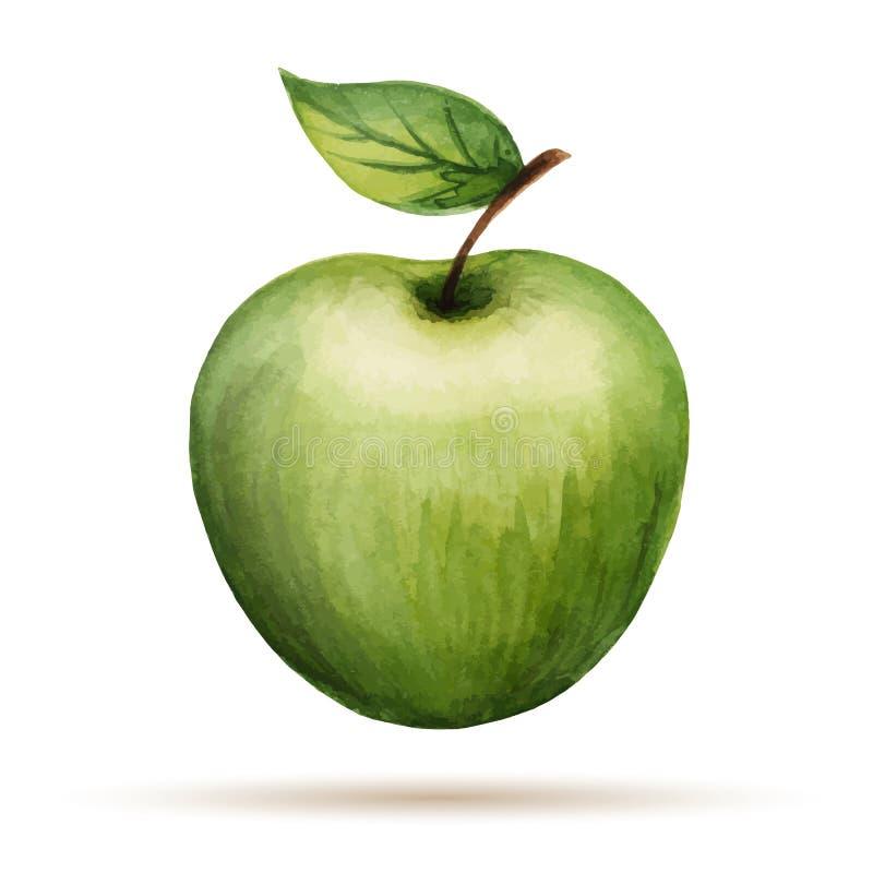 Aquarela Apple ilustração royalty free