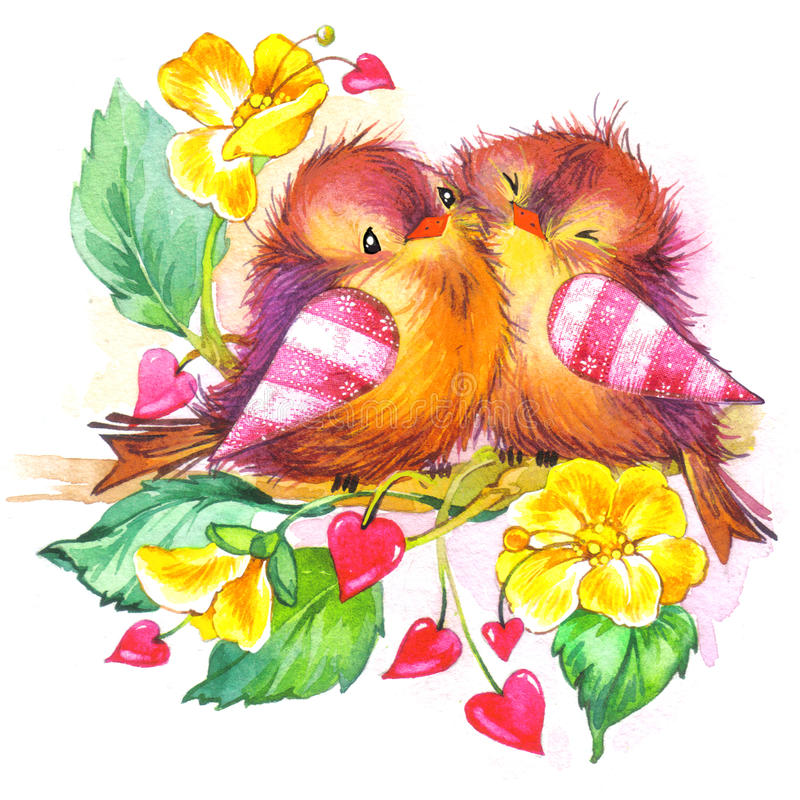 Aquarela bonito da ilustração do pássaro e do coração ilustração stock