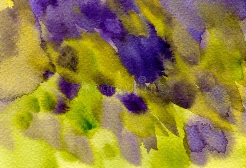 A aquarela colorida abstrata espirra, gotas, fundo das manchas da escova Verde pintado à mão, textura roxa para as tampas, empaco ilustração do vetor