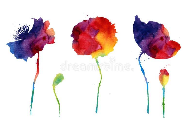 Aquarela com as flores abstratas da papoila ilustração do vetor