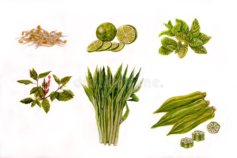 Aquarela da ilustração de Vegetabl Backgronds foto de stock royalty free