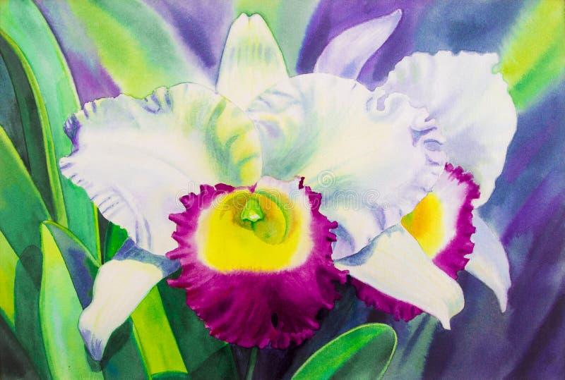 Aquarela das pinturas na cor branca realística original de papel da orquídea ilustração stock