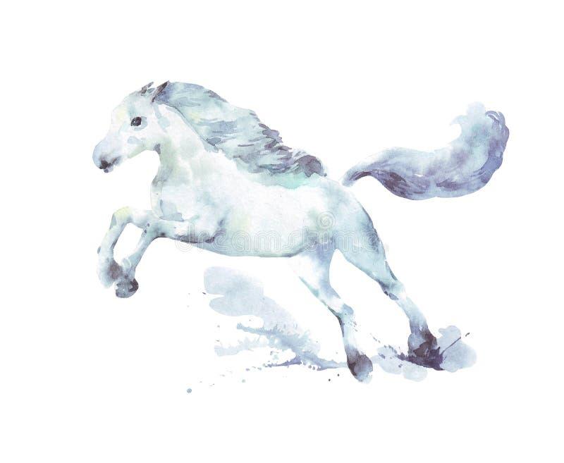Aquarela de corrida do cavalo branco ilustração do vetor
