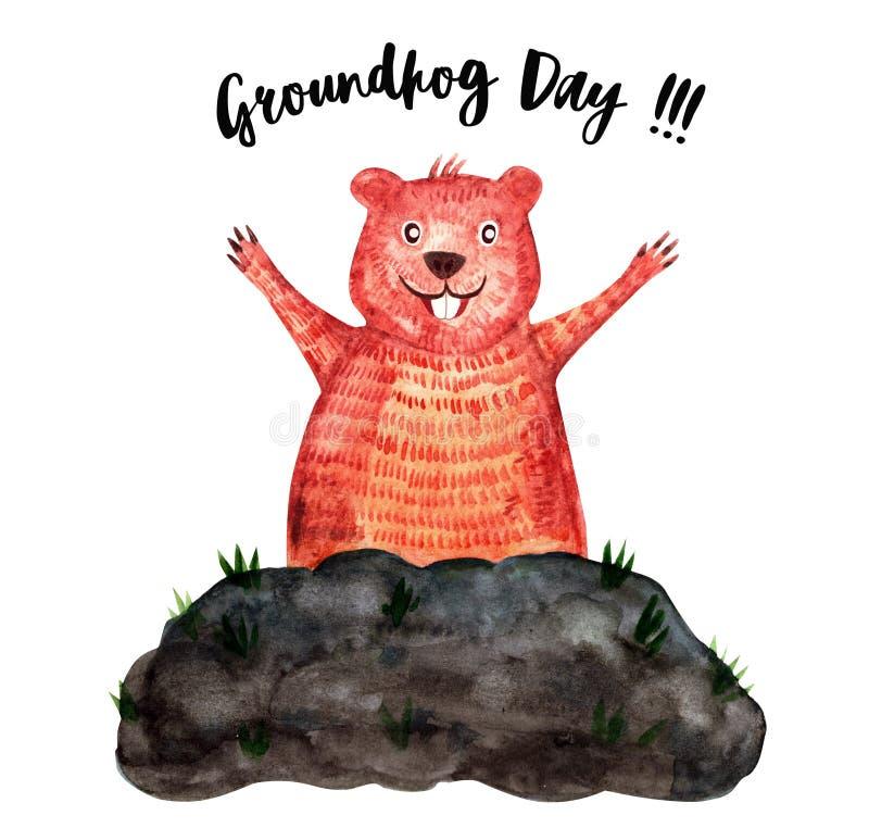 Aquarela do dia de Groundhog ilustração royalty free