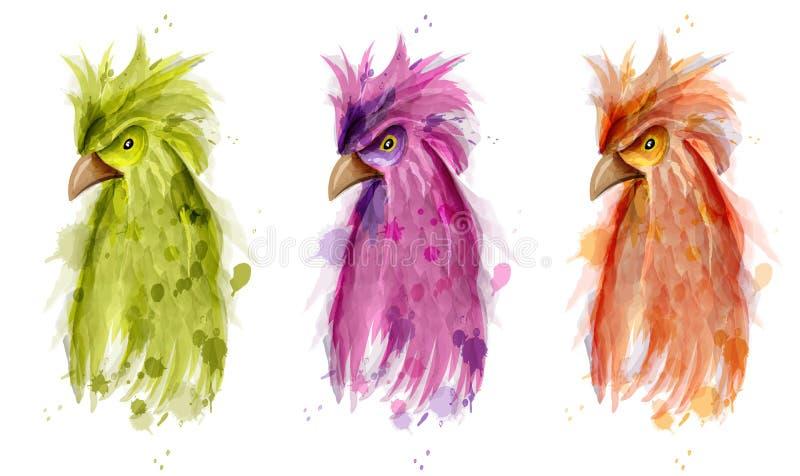 Aquarela do vetor do pássaro do papagaio Ilustração pintada do estilo dos desenhos animados ilustração royalty free