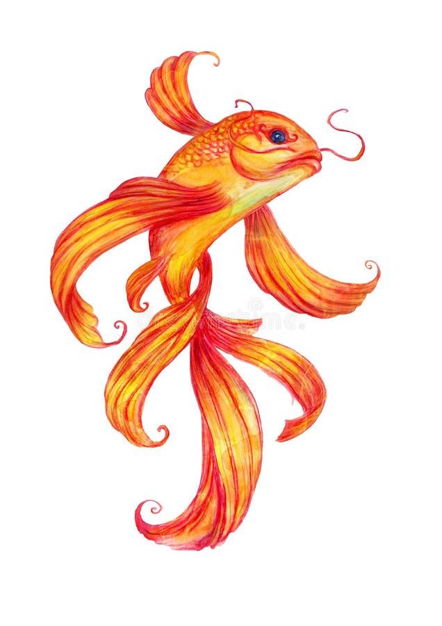 Aquarela dos peixes do ouro ilustração stock