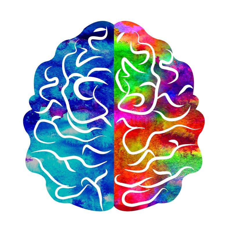 Aquarela Logo Modern Brain Sign da psicologia humano Estilo creativo Ícone dentro Conceito de projeto Empresa do tipo Arco-íris ilustração royalty free