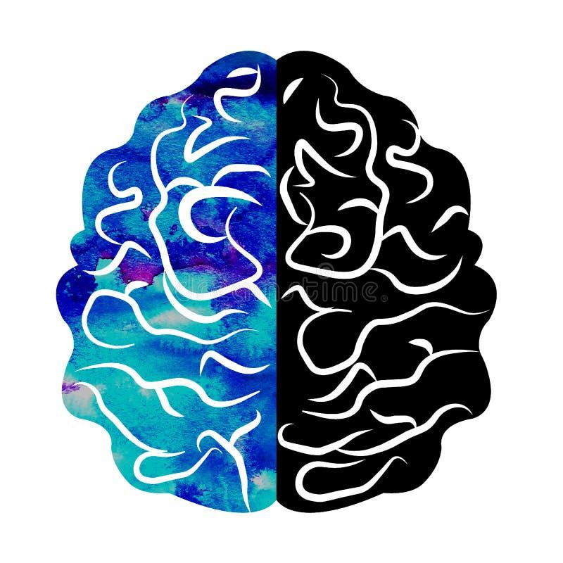 Aquarela Logo Modern Brain Sign da psicologia humano Estilo creativo Ícone dentro Conceito de projeto Empresa do tipo azul ilustração do vetor