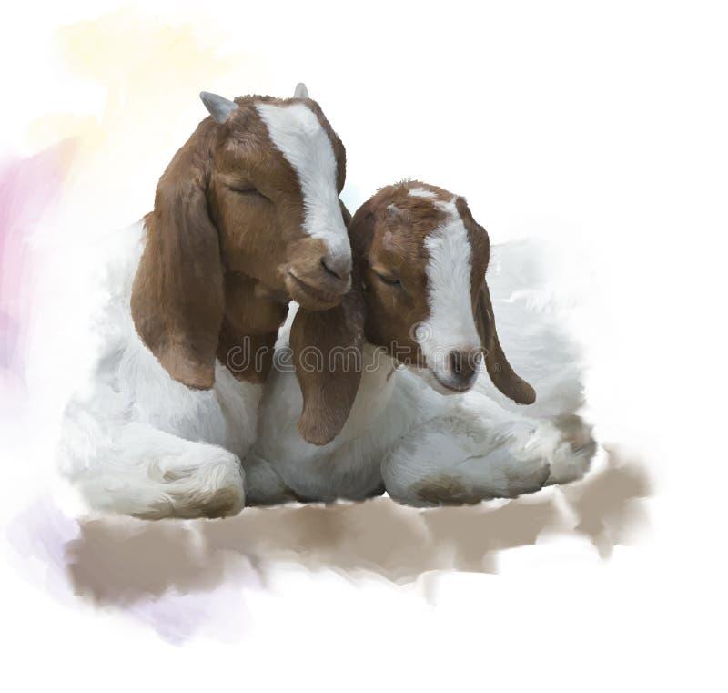 Aquarela nova das cabras do Boer ilustração royalty free