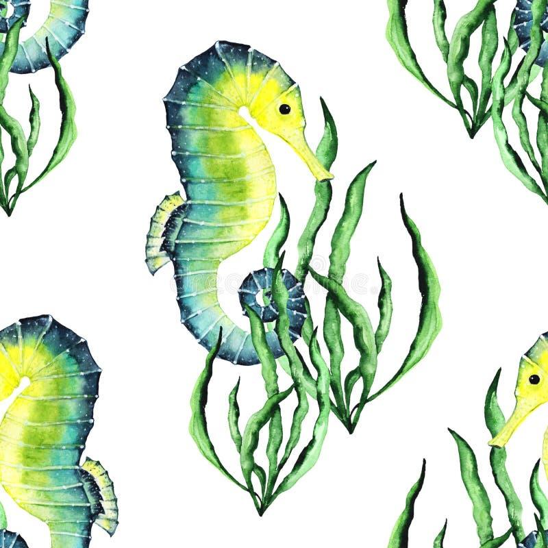 Aquarela Paterrn brilhante com cavalos marinhos e alga ilustração do vetor