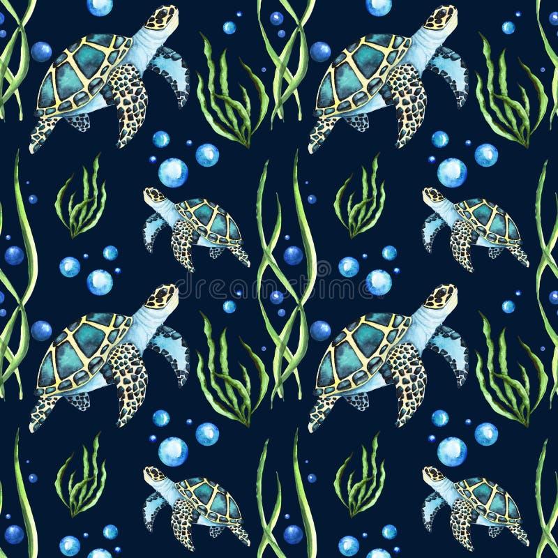 Aquarela Paterrn brilhante com tartarugas de mar e alga e bolhas ilustração royalty free