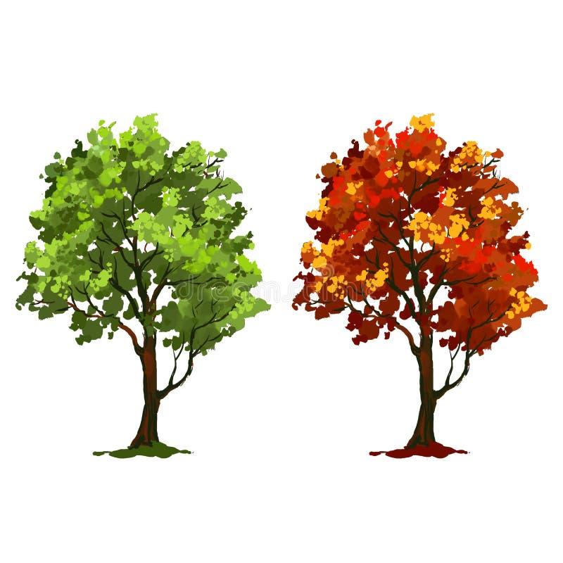 Aquarela pintada ilustração do vetor da árvore ilustração do vetor