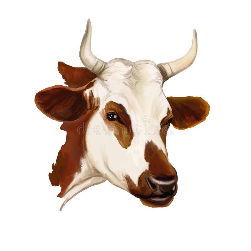 Aquarela pintada ilustração do vetor da vaca ilustração royalty free