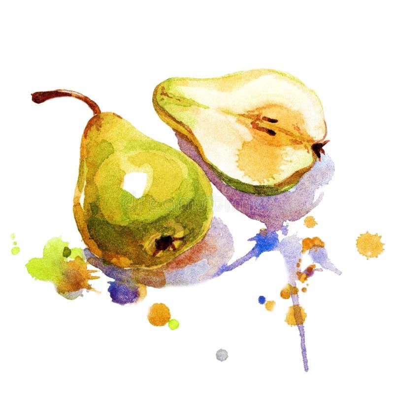 Aquarela pintada pera fotografia de stock