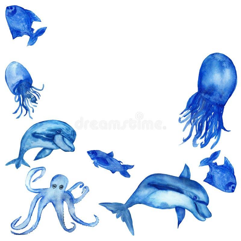 A aquarela pintado ? m?o, o grupo de golfinhos azuis da vida marinha, as medusa, os polvo e os peixes isolaram-se no fundo branco fotos de stock royalty free
