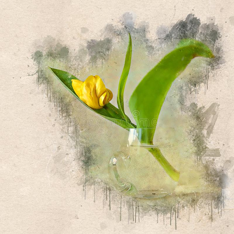 A aquarela pintou a tulipa amarela bonita em um copo de vidro ilustração royalty free