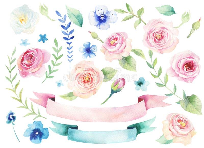 Aquarela que pinta o st das flores com papel de parede das folhas Mão tirada ilustração stock