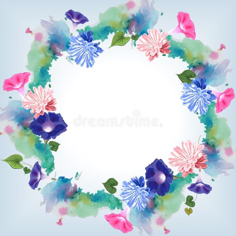Aquarela redonda da trepadeira do áster do quadro das flores fotos de stock