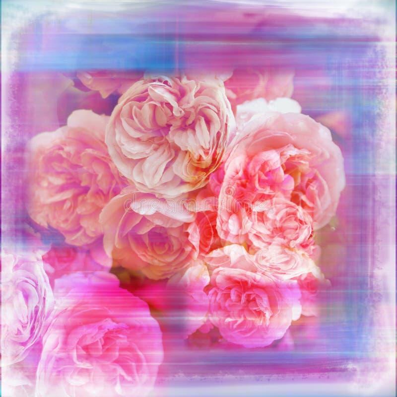 Aquarell-Blumen-Garten-weiche schäbige Einklebebuch-Seite lizenzfreie stockbilder