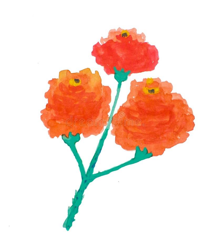 Aquarell-Blumen-Illustrations-rote Orange lizenzfreie abbildung