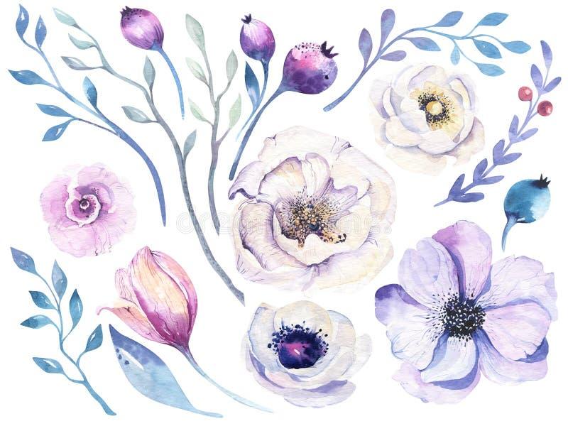Aquarell boho Blumensatz Frühlings- oder Sommerdekoration Blumenb vektor abbildung