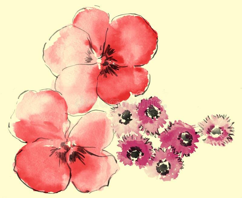 Aquarell des Gänseblümchens und des Sakura lizenzfreie abbildung