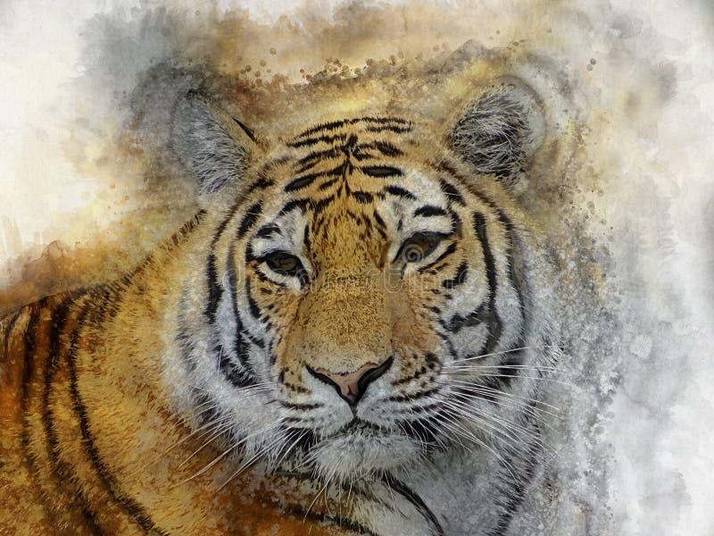 Aquarell-Digital-Malerei von Tiger Head-Weinlese vektor abbildung