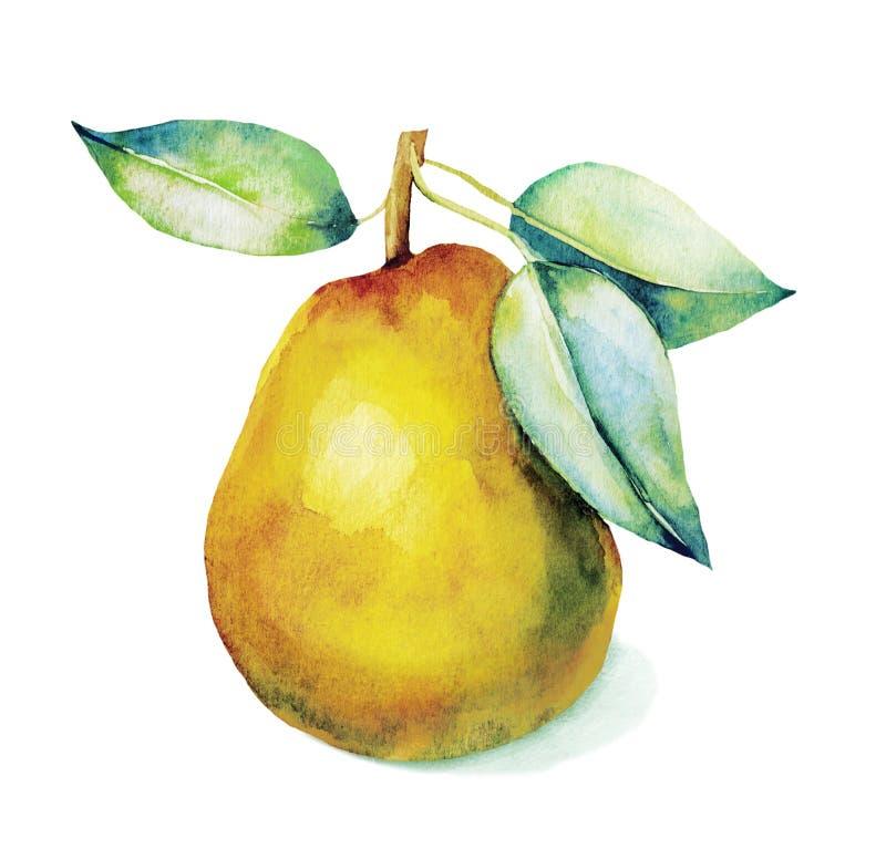 Aquarell eine gelbe Birne stock abbildung