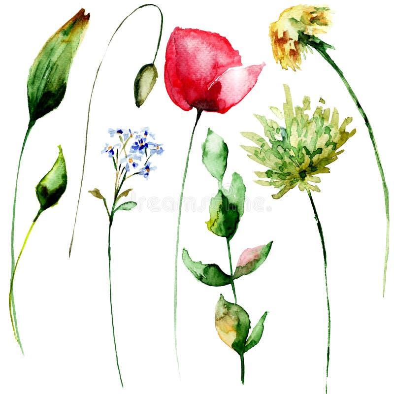 Fantastisch Frühlingsblumen Farbseiten Ideen ...