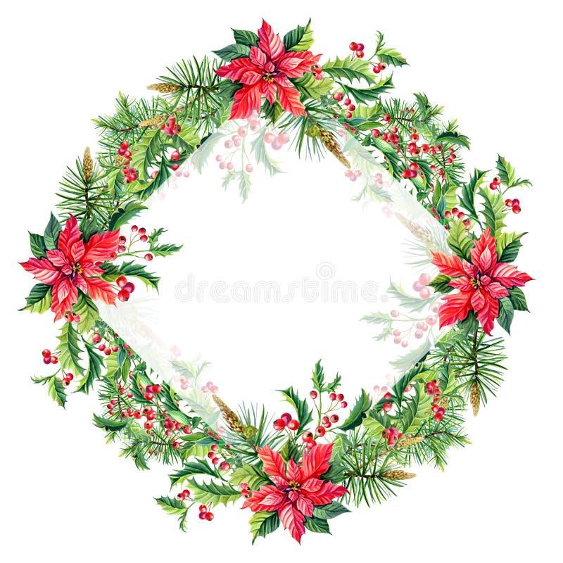 Aquarell-frohe Weihnacht-Feld mit roten Poinsettiablumen, Stechpalme, Blätter, Beeren, Kiefer, Fichte, grüne Zweige auf Weiß lizenzfreie abbildung