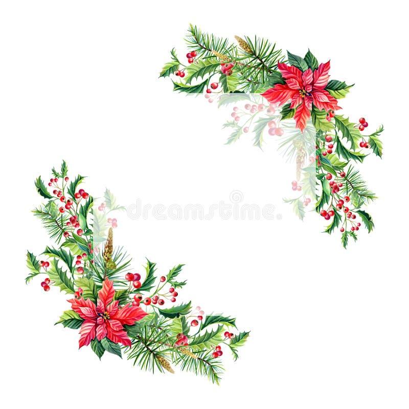 Aquarell-frohe Weihnacht-Feld mit roten Poinsettiablumen, Stechpalme, Blätter, Beeren, Kiefer, Fichte, grüne Zweige auf Weiß stock abbildung