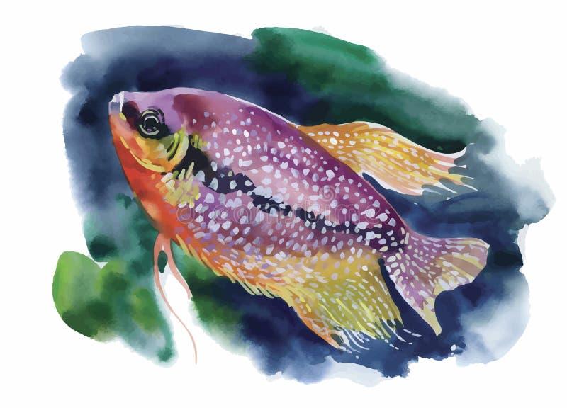 Aquarell-Meeresflora und -fauna-Hintergrund mit tropischen Fischen stock abbildung