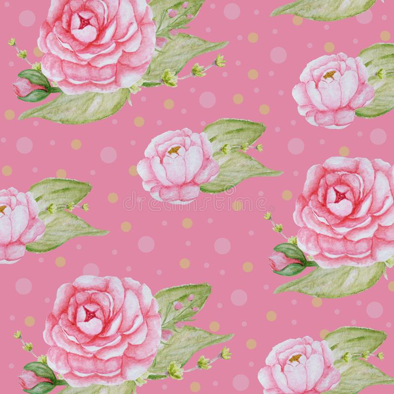 Aquarell-Pfingstrosen-Blumenmuster, rosa Pfingstrosenbeschaffenheit, romantisches Einklebebuchpapier auf rosa Hintergrund vektor abbildung