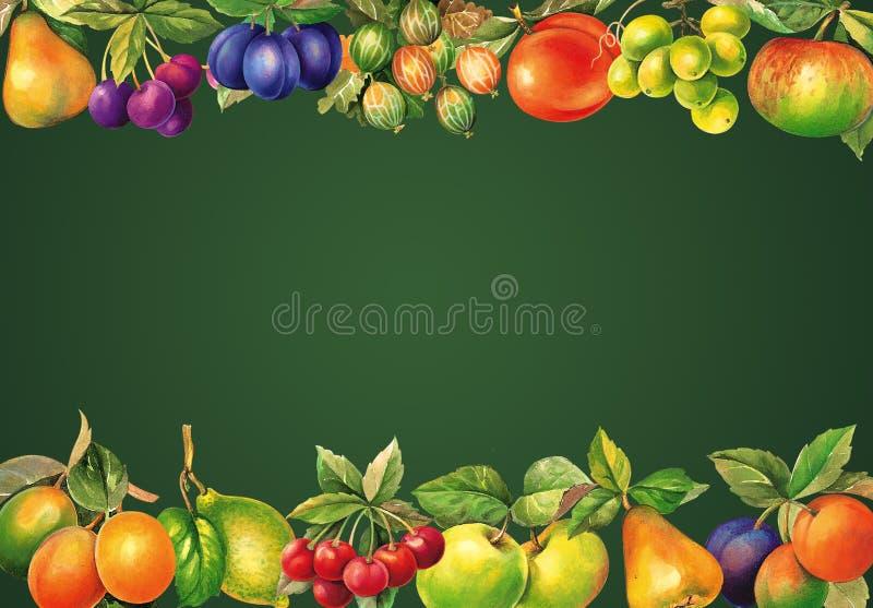 Aquarell trägt Tafel Früchte Illustration für Hintergrund, Grußkarten, Fahne, gesundes Lebensmittel, Medien lernend Einladungen u lizenzfreies stockbild