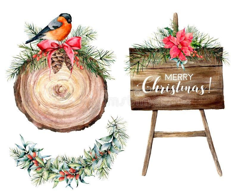 Aquarell-Weihnachtskennsatzfamilie mit Feiertagsblumendekor Handgezogene hölzerne Scheibe, Baumbrett und Winterbetriebsdekor stock abbildung
