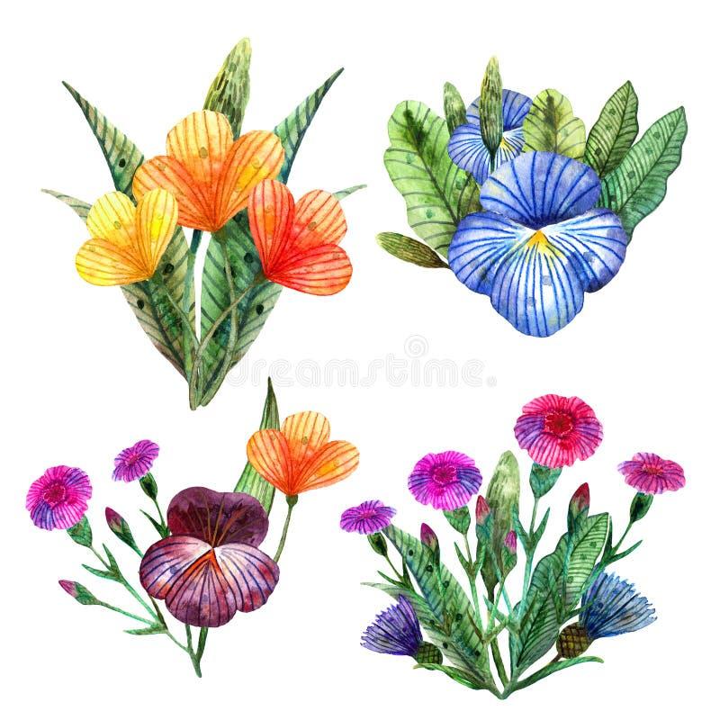 Aquarell Wildflowers Stellen Sie von vier netten Sommerblumensträußen von bunten Wiesenblumen ein vektor abbildung