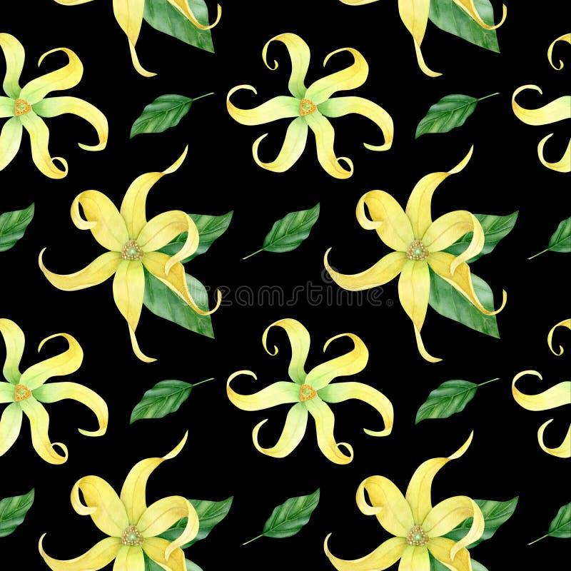 Aquarell ylang ylang Sammlung stockbild