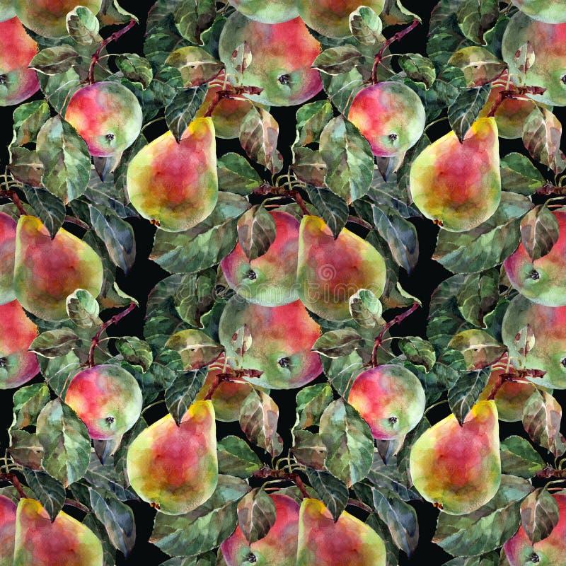 Aquarellbirne mit Apfel Nahtloses mit Blumenmuster Schwarzer Hintergrund vektor abbildung
