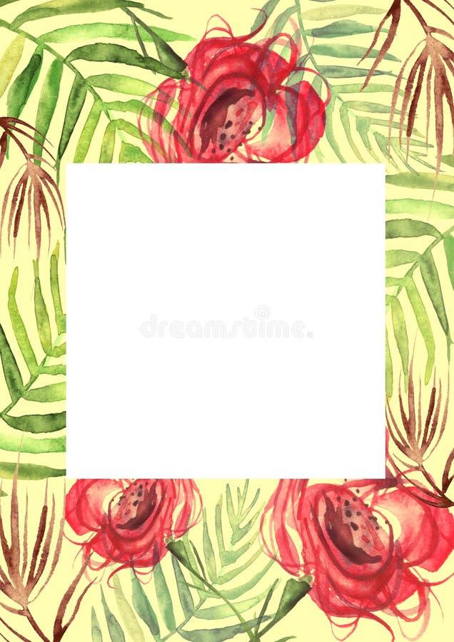 Aquarellblumen stiegen Rose, Blattfarn Blumenplakat stock abbildung