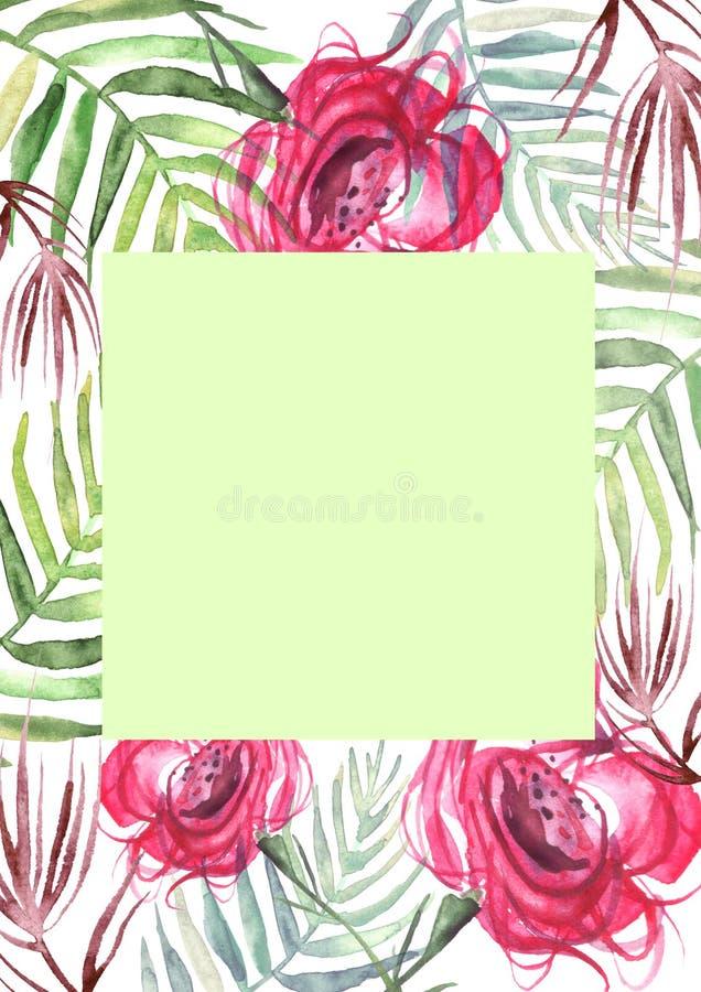 Aquarellblumen stiegen Rose, Blattfarn Blumenplakat vektor abbildung