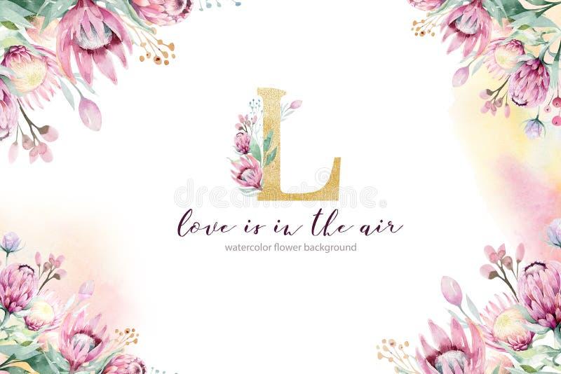 Aquarellblumendekorationsfrühlings-Sommerhintergrund mit Blüte Proteablume Heiratsdekorationsrahmen mit Blumen lizenzfreie abbildung